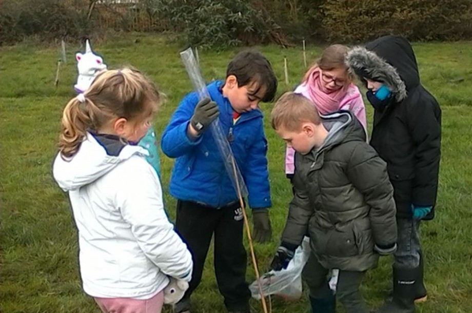 Year 1 Forest School Spring Day